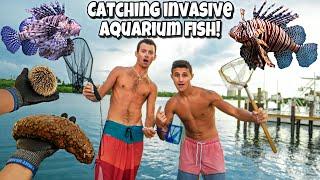 Catching INVASIVE LION FISH For My AQUARIUM!!
