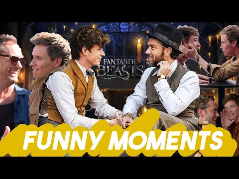 EDDIE REDMAYNE AND JUDE LAW CANT STOP LAUGHING | Fantastic Beasts Interviews Funny Moments