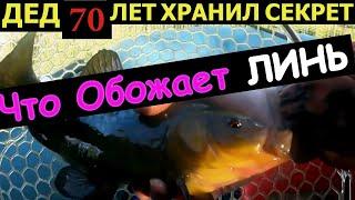 ЛЮТАЯ НАСАДКА НА ЛИНЯ Рыбалка на линя Как поймать линя Линь на поплавок