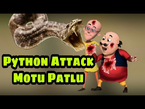Motu Patlu Kungfu Attack Against Python | New Episode | Motu Patlu 2018 | Wow Kids