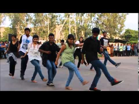 CIS freshers flash mob 2k15, University of Hyderabad