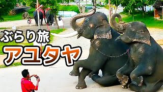 アユタヤを歩いて遺跡見たり象見たりした【タイ旅行記#5】Journey of Ayutthaya,Thailand