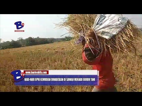 Pengalaman Gracia Indri JadiPengalaman Gracia Indri JadiTulang Punggung KeluargaPengalaman Gracia In.