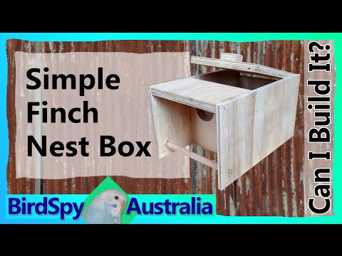 Simple Finch Nest Box   Can I Build It? Episode 04