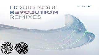 Liquid Soul - I See the Spirit (Protonica Remix)