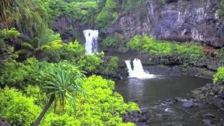 Ekolu - My Island Home Maui