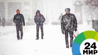 Арктический холод и снег в Москве: синоптики рассказали о погоде на этой неделе - МИР 24