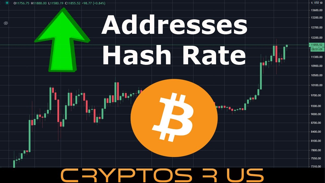 Bitcoin Moves Toward $12,000 - Addresses and Hash Rate at ATHs