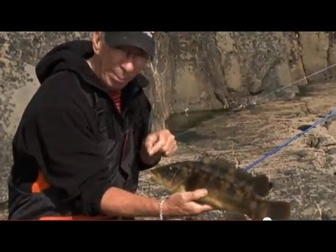 Alan Yates Sea Fishing Ireland Part 1