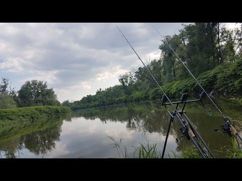 Wędkarstwo gruntowe - rzeczny feeder Odra