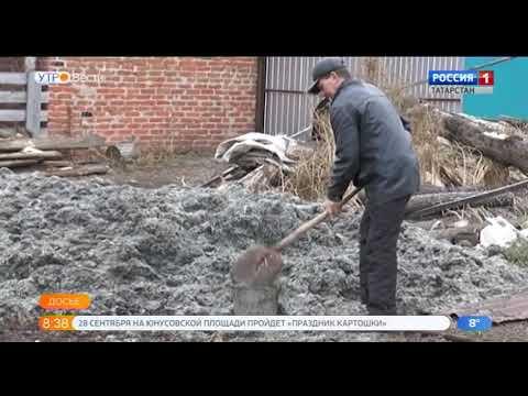 8 фермеров из Татарстана выиграли «Агростартап»