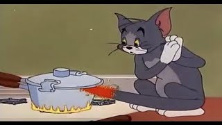 ᴴᴰ Tom & Jerry (Classic English Episodes) - Cartoon For Kids - Full Episodes in HD (#1)