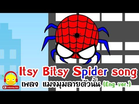 เพลงแมงมุมลายตัวนั้น (Itsy bitsy spider) ♫ เพลงเด็กอนุบาลภาษาอังกฤษ Indysong Kids