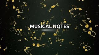 Musical Notes Stock Motion Graphics