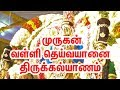 Lord Murugan Valli Deivanai Thirukalyanam   வள்ளி தெய்வானைதிருக்கல்யாணம்  Lord Murugan Thirukalyanam