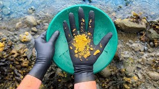 Finding Gold Nuggets While Scuba Diving! $2,000+ (How to Find Gold)