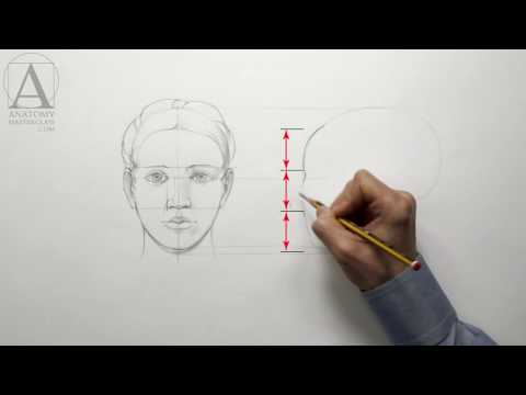 Human Head Proportions - Anatomy Master Class for figurative artists