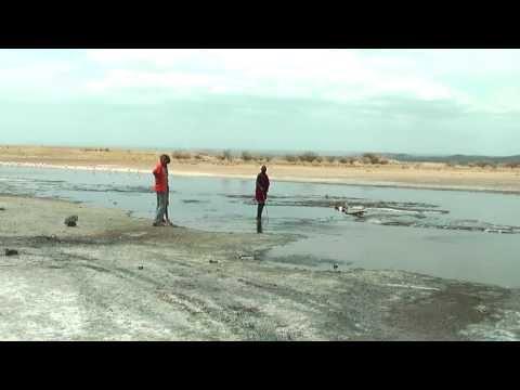 Hot Springs At Lake Magadi In Southern Kenya