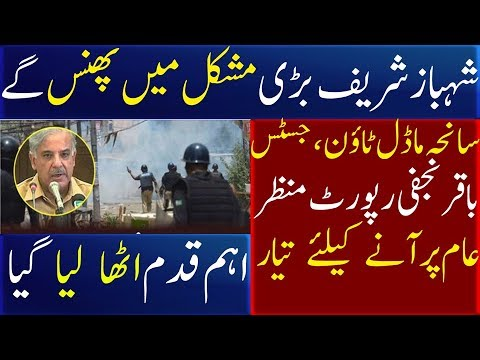 Baqir najfi report nawaz sharif and shahbaz sharif