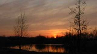 Steve Hillage:  Octave Doctors/ Not fade away.wmv
