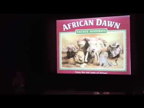 Scifest Africa 2016 - Professor Mike Bruton - Who was South Africa's greatest inventor?