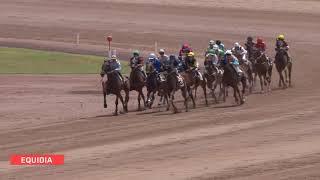 Vidéo de la course PMU PRIX DE L'INDRE
