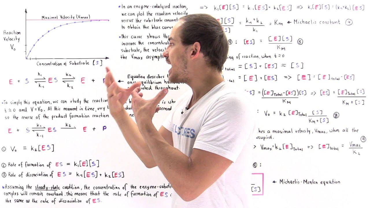 Download Derivation of Michaelis-Menten Equation