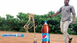 MENTOS & PEPSI  PHYSICAL REACTION EXPERIMENT VIDEOS MALAYALAM