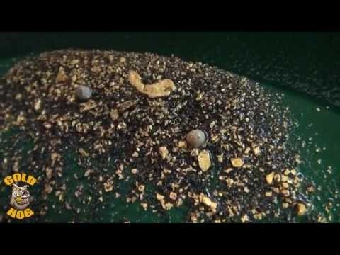 Gold Prospecting - Dredging - Gold Hog - Spiral Wheel - and More