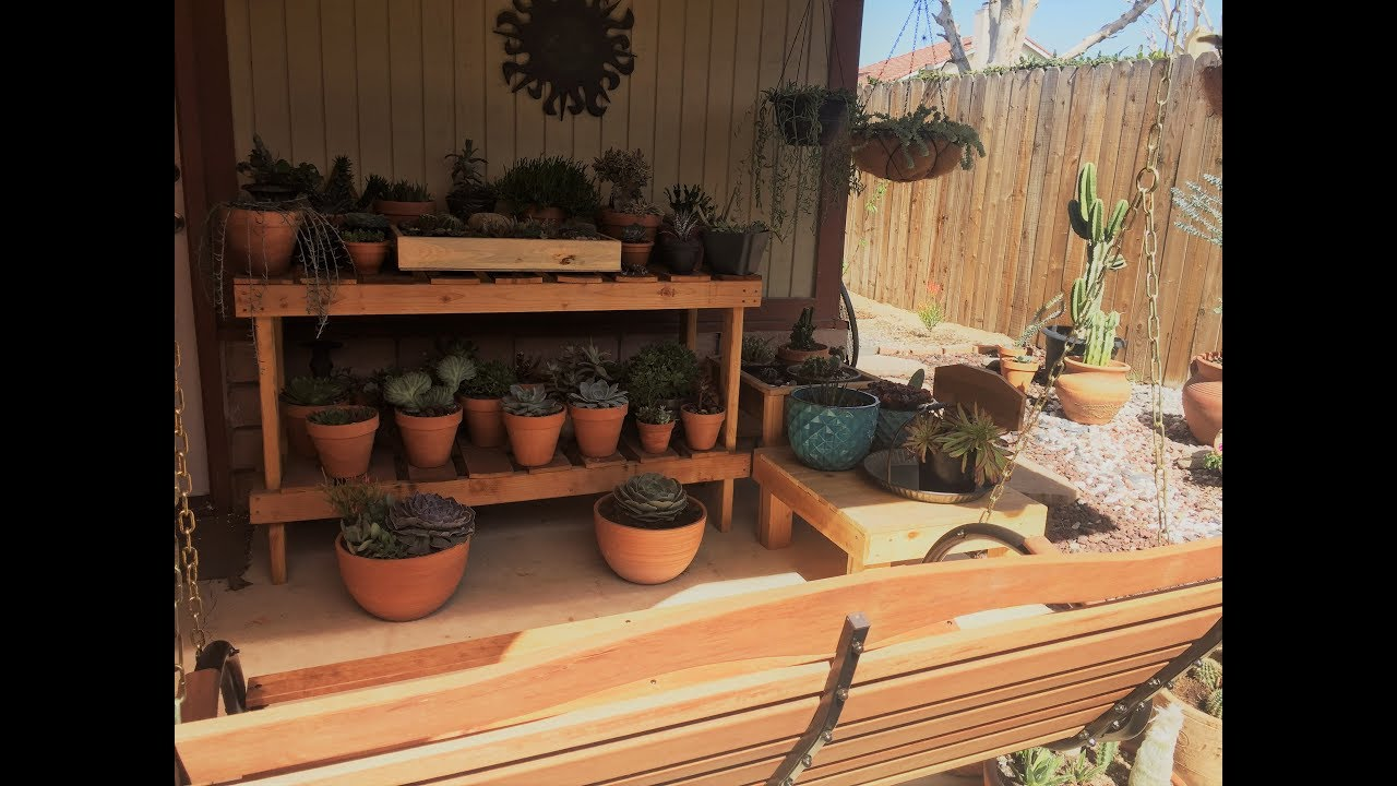 March 6th, 2018 Cacti and Succulents Garden Update - YouTube