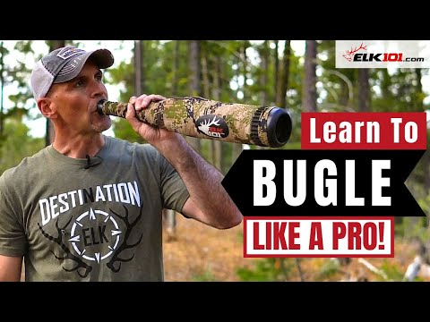 Learn to Bugle with Diaphragm Elk Calls
