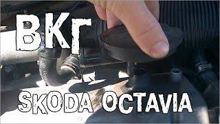 ВКГ Шкода Октавия 1.9 TDI - пример работы вентиляции картерных газов(Вентиляция картерных газов (ВКГ) на Skoda Octavia состоит из воздушного редукционного клапана (PCV) и патрубка вент..., 2015-06-16T17:36:14.000Z)