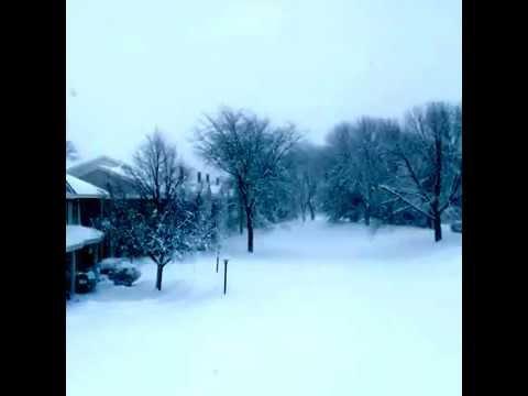 Chicago, IL - blizzard 02.01.2015 (Naperville, IL)