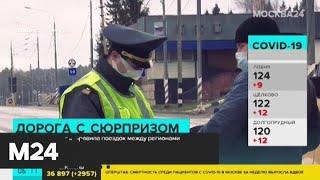 ГИБДД разъяснила правила поездок между регионами - Москва 24