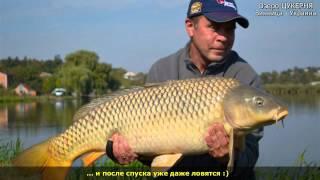 Озеро Цукерня • Рыба была ... есть ... и будет ! ;)(В