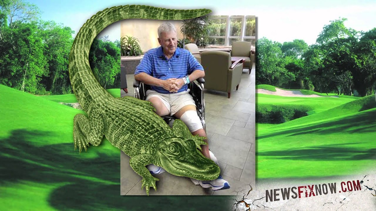 Gator attacks 75-year-old on golf course - YouTube