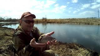 Рыбалка в Пензенской области Открытие сезона по прудовой рыбалке Ловля карася на фидер