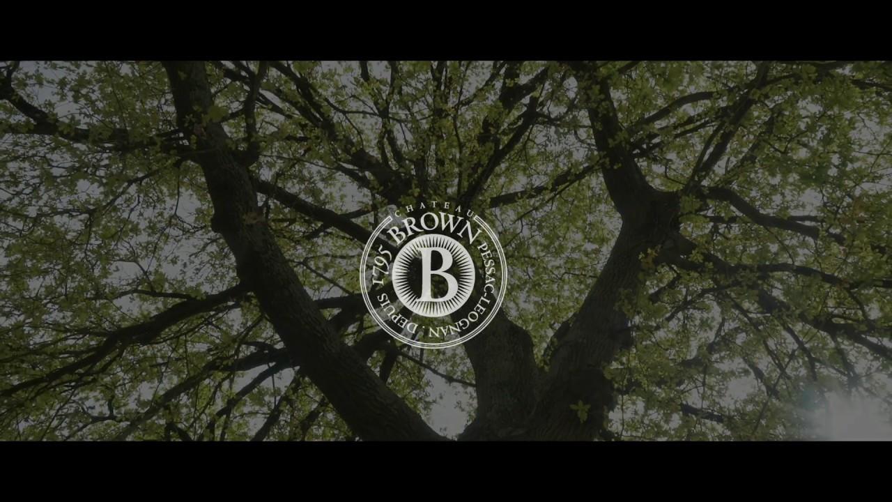 Château Brown et la biodiversité