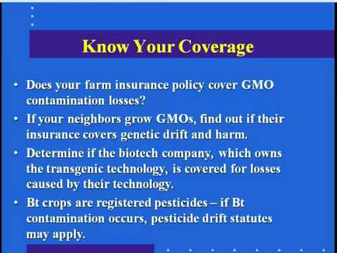 GMO Contamination: What's an Organic Farmer To Do?
