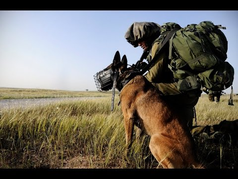 IDF's K-9 Oketz Unit - Friends of the IDF (FIDF)