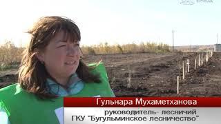 """Информационная программа """"Объектив"""" от 18 октября 2019"""