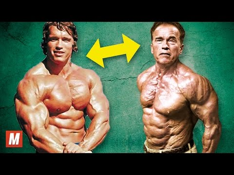 Arnold Schwarzenegger  From 17 To 70 Years Old