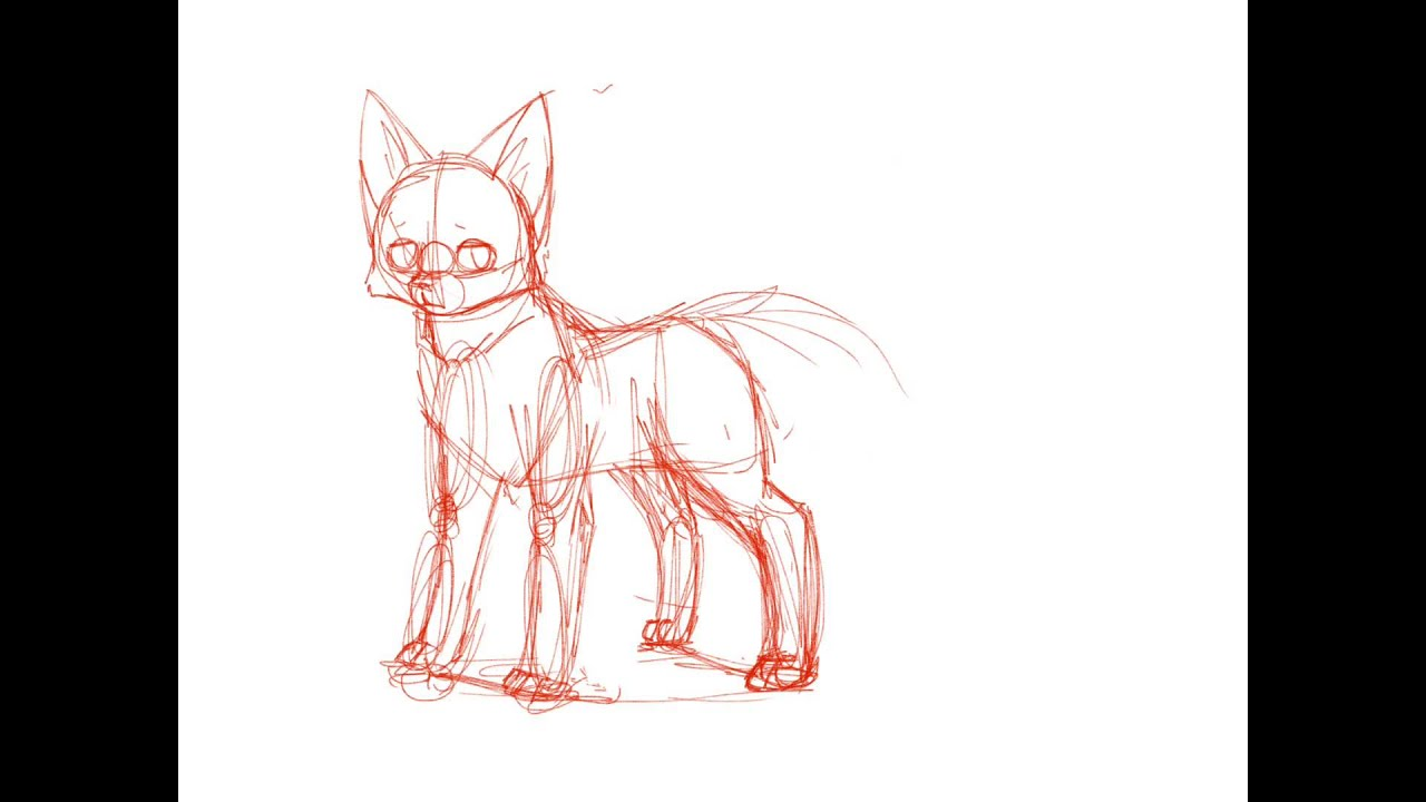 Line Drawing Fox : How to draw a wolf and fox youtube