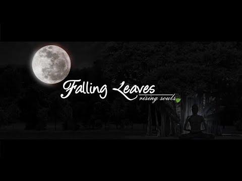 "Travel Documentary ""Falling Leaves -rising souls"" Patna to Bodhgaya (Teaser)"