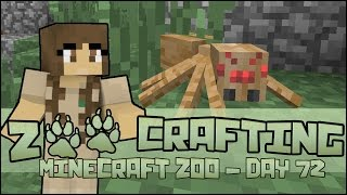 Zoo Crafting! Ben's Eight-legged Addition To The Family! - Episode #72 | Season 2