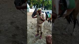 Horse riding training in Police line LKO