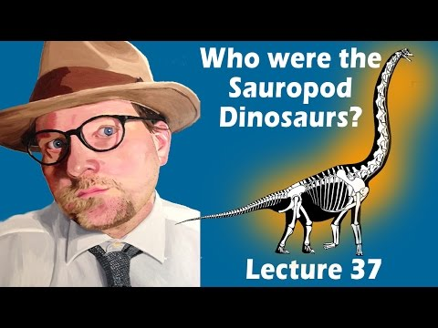 Who were the Sauropod Dinosaurs?