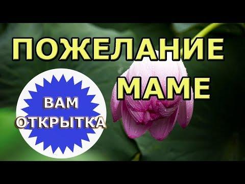 Пожелание для мамы в стихах. Красивое видео поздравление.