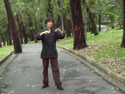 发力 - Fa Li - LaoQiGong / Yi Quan / XingYiQuan / Tai Chi Chuan - Mestre Cai WenYu 1