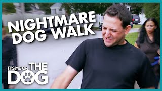 Dog Walk turns into Tug of War | It's Me or the Dog